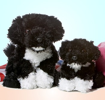 Aurora Stuffed Plush Portuguese Water Dogs