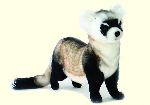 Hansa Stuffed Plush Black Foot Ferret