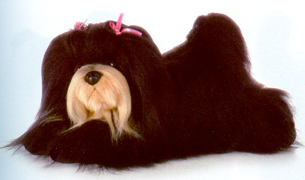 Aurora Lifelike Stuffed Plush Lhasa Apso