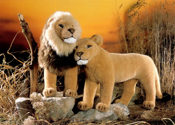 Kosen Stuffed Plush Lion and Lioness