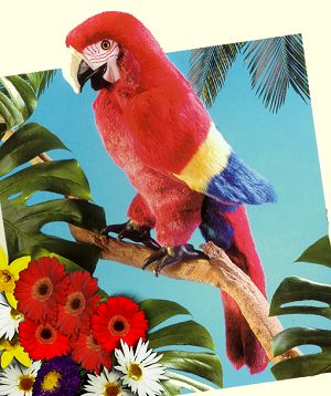 Folkmanis Plush Scarlet Macaw Hand Puppet