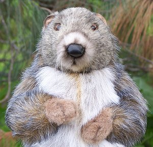 Hansa Stuffed Plush Marmot