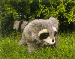 Folkmanis Stuffed Baby Raccoon