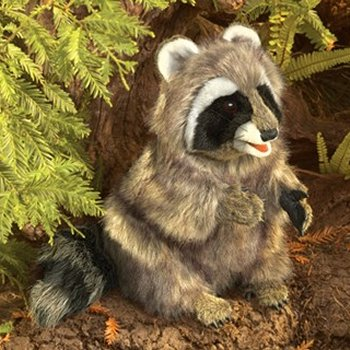 Folkmanis Plush Sitting Raccoon Hand Puppet