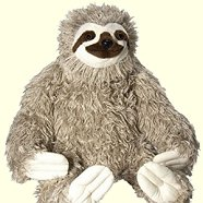 Wild Republic Jumbo Sloth