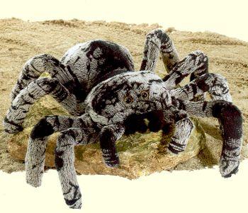 Tarantula Stuffed Animal, Plush Tarantula Stuffed Animal
