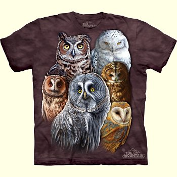 Owl Collage T-Shirt from The Mountain
